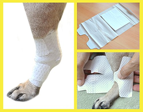 PawFlex Joint and Large Area Wound Bandages for Dogs, Cats and Other Pets. Great for Leg Joint sprains and Tail Injuries! Non Adhesive, Breathable Non-Slip Disposable Washable.Value 10 Pack (Medium)