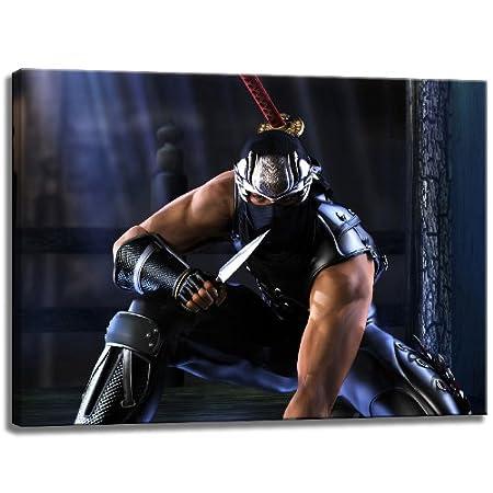 Imagen de Ninja Gaiden en la lona, ??tamaño: 60x40 cm ...