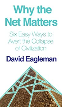 Why the Net Matters by [Eagleman, David]