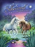 Silberwind, das weiße Einhorn - Sturmwolkes Geheimnis: Band 4