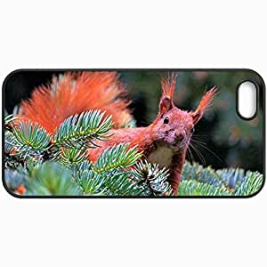 Customized Cellphone Case Back Cover For iPhone 5 5S, Protective Hardshell Case Personalized Squirrel Black