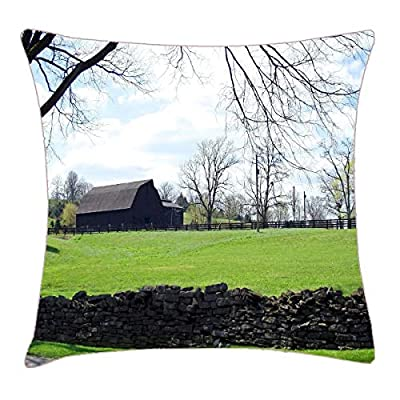 NYWDZ Kentucky Horse Farm Throw Pillow Cover 18x18 Inch Two Sides Design Printed Pillowcase