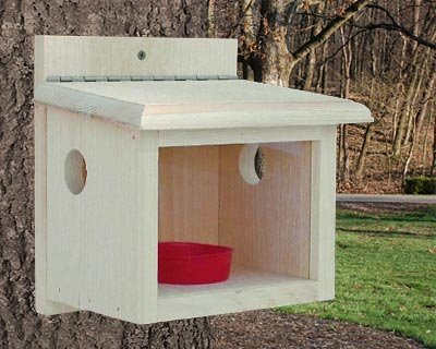 Coveside Conservation Products Post Mount Bluebird Feeder -