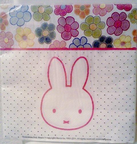 Miffy / Nijntje Bunny Rabbit Birthday Party Luncheon / Dinner Napkins ~ 20 Count by Momentum Brands
