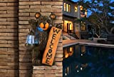 Sunjoy Welcome Bear Statue with Solar LED Lantern, Multicolored