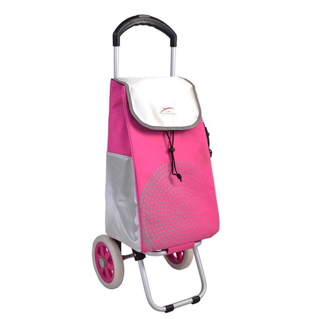 Carretilla YYF Carro de la Compra Comprar un Coche Pequeño Pull Car Portable Pull Pull Folding Car Lever Bar Home Trolley (Color : D)