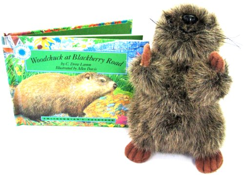 Woodchuck at Blackberry Road - a Smithsonian's Backyard Book (Mini book with stuffed toy (Allen Stuffed Animal)