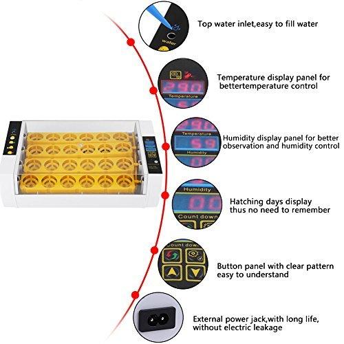 GOTOTOP Incubator Hatcher-24 Digital Clear Egg Turning Incubator Hatcher Automatic Temperature Control Energy-saving Egg Incubator (#1)