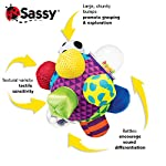 Sassy Chime & Chew Textured Ball 9 Multiple textures & materials engage baby's developing tactile sensitivity & teach baby about variety Chunky sized bumps encourage reaching, grasping, and transferring from one hand to the other Gentle rattle sounds create neural connections in babies brains from birth through 3 years