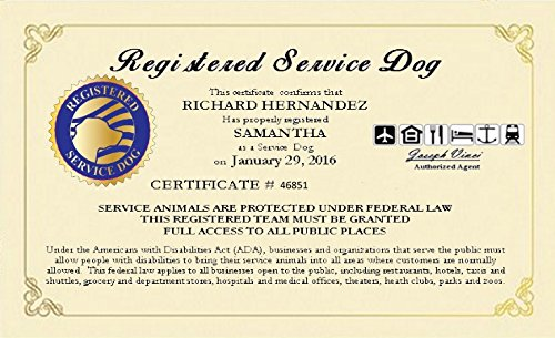 Seller profile working service dog llc for Dog show certificate template