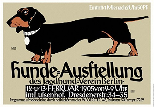 German Dog Show Exhibition Art Print Poster Dachshund