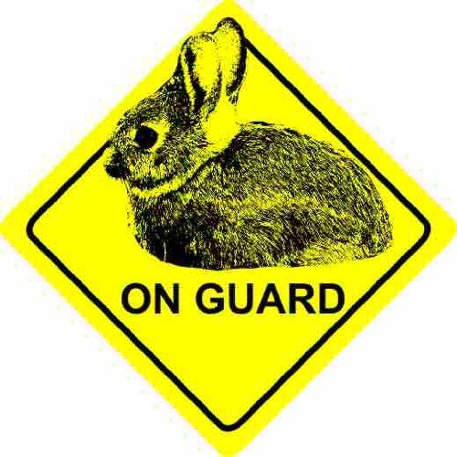 Rabbit On Guard Home / Car Sticker Sign / Window Decal Bumper