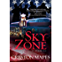Sky Zone: A Novel (The Crittendon Files)