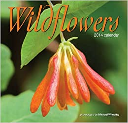 Wildflowers 2014 Mini Calendar