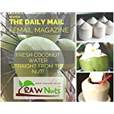 Fresh Whole Thai Young Coconuts - 6 Pack - 100% Pure Raw Coconut Water straight from the Coconut!