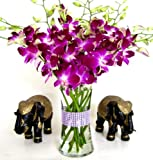 Purple Dendrobium Orchids with Vase w/ Rhinestone Mesh Ribbon