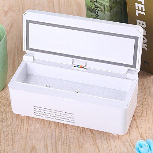 SL&BX Caja refrigerada de insulina Portable, Pequeña Nevera ...