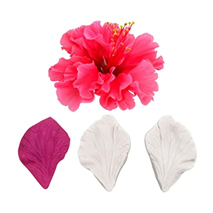 Amazoncom Ak Art Kitchenware Hibiscus Petal Veiners Fondant Flower