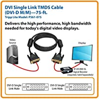 DVI-D M//M Tripp Lite DVI High Definition Dual Link Digital TMDS Monitor Cable 100-ft. P560-100-HD