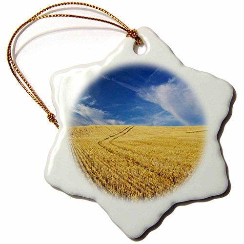 3dRose Danita Delimont - Farms - Farm Fields, Harvest Wheat, Palouse, Washington, USA - US48 TEG0425 - Terry Eggers - 3 inch Snowflake Porcelain Ornament (orn_148727_1)