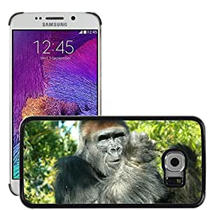 Hot Style Cell Phone PC Hard Case Cover // M00114550 Zoo San Diego Animals Gorilla Monkey // Samsung Galaxy S6 EDGE (Not Fits S6)