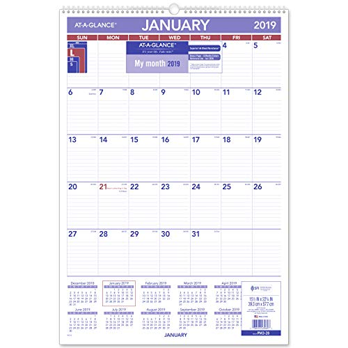 (AT-A-GLANCE 2019 Monthly Wall Calendar, 15-1/2