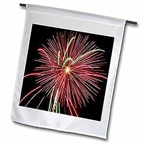 Sandy Mertens patriótica–Rojo fuegos artificiales–banderas