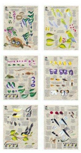 Donna Dewberry One Stroke Painting - One Stroke RTG #1004 Worksheet Pack