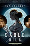 Deception on Sable Hill (The Chicago World's Fair Mystery Series)