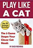 Play Like a Cat: The 3 Game Stages Your Clever Cat Needs