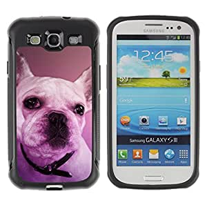 ZETECH CASES / Samsung Galaxy S3 I9300 / FRENCH BULLDOG BOSTON TERRIER PURPLE DOG / Francés dogo Boston terrier púrpura perro / Robusto Caso Carcaso Billetera Shell Armor Funda Case Co