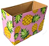 25 8x4x4 Pineapple Designer Boxes corrugated Cardboard Box Shipping Cartons Mailers Pineapples Custom Printed Containers 8'' x 4'' x 4'' #SmileMail Brand