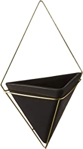 Umbra, Black/Brass Trigg Large Hanging Planter Wall Decor, for Displaying Small Plants, Pens and Pencils, Makeup Accessories