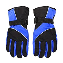 Men Ski Gloves - SODIAL(R) Men Ski Gloves Thermal Waterproof For Winter Outdoor Sports Snowboard (Blue)