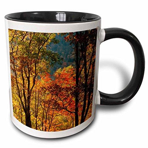 3dRose mug_189370_4