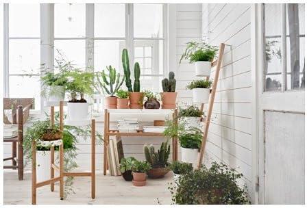 Ikea SATSUMAS - Soporte para macetas (bambú, 70 cm), Color Blanco: Amazon.es: Juguetes y juegos