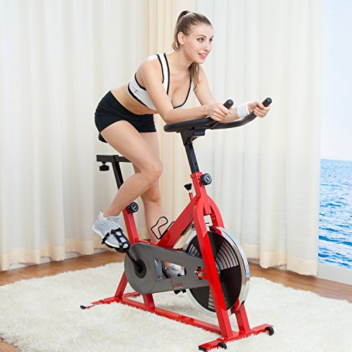 Sunny SF B1001 Indoor Cycling Bike