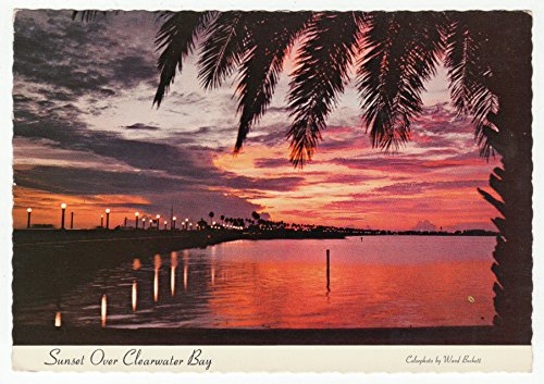 Clearwater Bay - Clearwater Bay Sunset, Florida Vintage Original Postcard #0279 - January 30, 1980