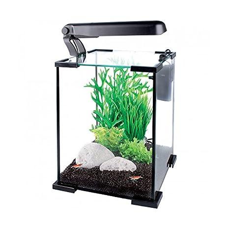 Flamingo Nano Yamato - Conjunto de acuario para acuariofilia 10 l 20 cm: Amazon.es: Productos para mascotas