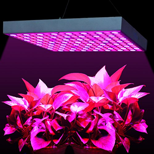 LED Grow Lights 45W, MAIICY Newest Red Blue Spectrum LED Plant Light Hang Lamp Super Bright UV IR 225 LEDs for Indoor Greenhouse Hydroponic Aquatic Plants Growing and Flowering (Blue Led Plant Red)