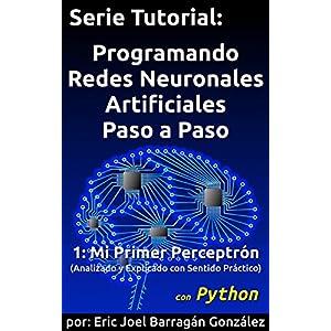1-Mi-Primer-Perceptrn-con-Python-Analizado-y-Explicado-con-Sentido-Prctico-Programando-Redes-Neuronales-Artificiales-Paso-a-Paso-con-Python