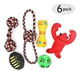 Pets Playmate Dog Chew Toys - Rope Squeak Toys pubby small dogs - Ball,Lobster,Bones,Ball - Gift Set 6 Pack - Keep Your Dog Active & Happy Outdoor