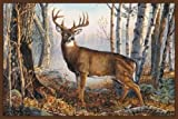 Wilderness Deer Woods Rug 37″ x 52″ Forest Rustic Carpet Wildlife Theme Decor Review
