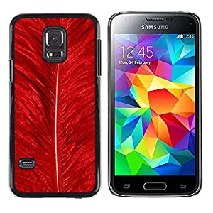 Paccase / Dura PC Caso Funda Carcasa de Protección para - Feather Red Bird Nature Bright Nature - Samsung Galaxy S5 Mini, SM-G800, NOT S5 REGULAR!