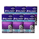 Feliway 48-Milliliter Plug-In Refills, 6 Refills thumbnail