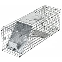 Havahart 1088 Collapsible One-Door Animal Trap for Rabbit, Skunk,  Mink, and Large Squirrels