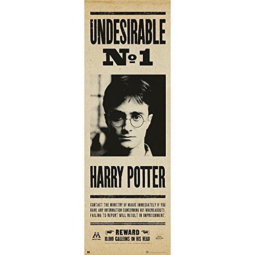 Grupo Erik editores Harry Potter Undesirable No 1 Door Poster –  by Grupo Erik Editores (Image #1)