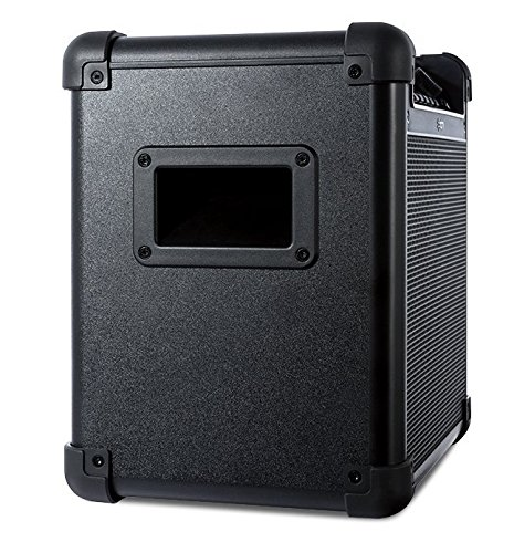 ION Audio Tailgater (iPA77) | Portable Bluetooth PA Speaker with Mic, AM/FM Radio, and USB Charge Port by ION Audio (Image #8)