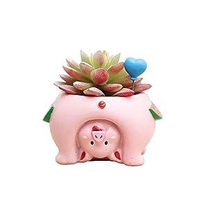 Youfui Cute Animal Flowerpot Animal Resin Succulent Planter Desk Mini Ornament (Pig)