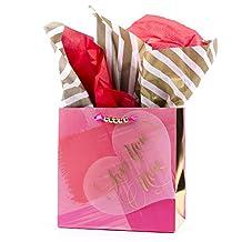 Hallmark Signature Ready-to-Go Medium Valentine's Day Gift Bag (Love On Heart)